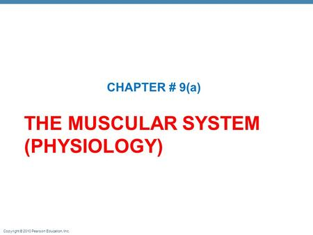 THE MUSCULAR SYSTEM (PHYSIOLOGY)