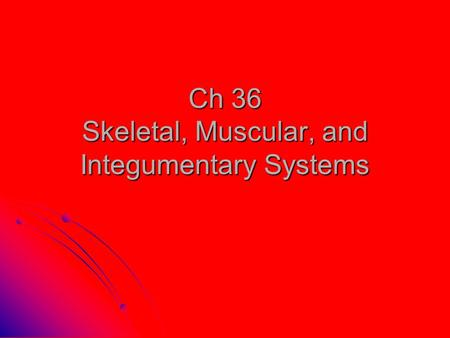 Ch 36 Skeletal, Muscular, and Integumentary Systems