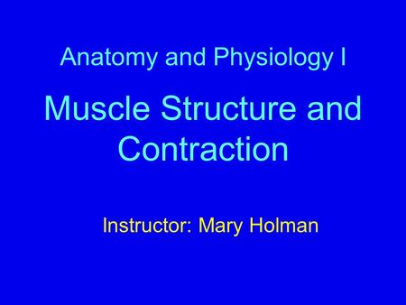 Anatomy and Physiology I Muscle Structure and Contraction Instructor: Mary Holman.