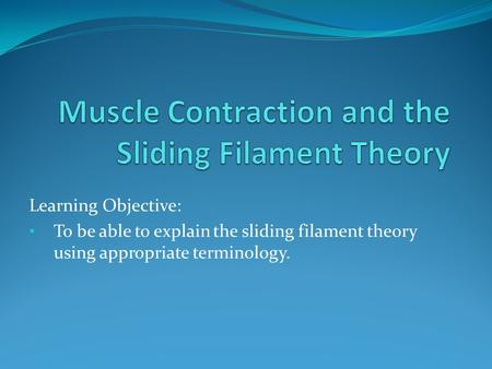 Learning Objective: To be able to explain the sliding filament theory using appropriate terminology.