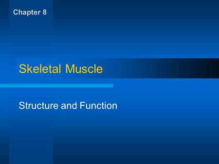 Skeletal Muscle Structure and Function Chapter 8.