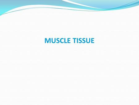 MUSCLE TISSUE. A primary tissue type, divided into: skeletal muscle cardiac muscle smooth muscle.