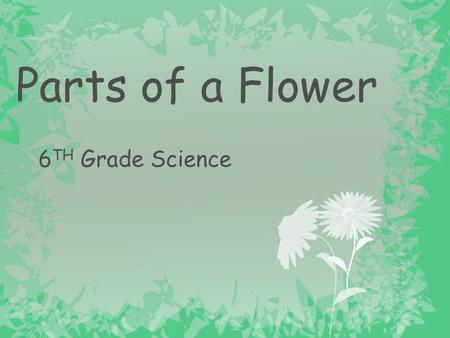 Parts of a Flower 6TH Grade Science.