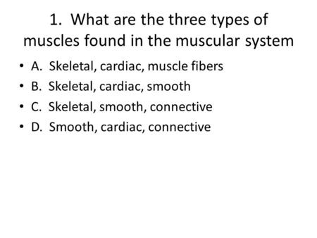 1. What are the three types of muscles found in the muscular system A. Skeletal, cardiac, muscle fibers B. Skeletal, cardiac, smooth C. Skeletal, smooth,
