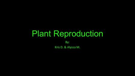 Plant Reproduction By: Kris D. & Alyssa M.. Vocabulary Ovule- Contains the female sex cells Pollen Grain- Contains the male sex cells Pollen Tube- Acts.