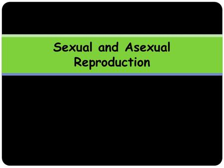 Sexual and Asexual Reproduction. Learning Outcomes By the end of this lesson, you should be able to:  Define asexual and sexual reproduction.  Describe.