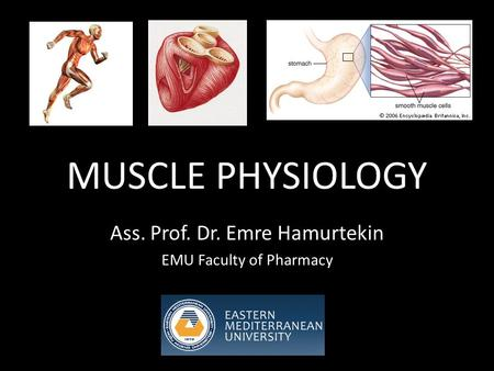 MUSCLE PHYSIOLOGY Ass. Prof. Dr. Emre Hamurtekin EMU Faculty of Pharmacy.