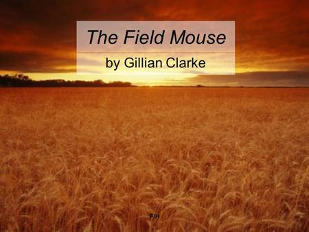 F/H The Field Mouse by Gillian Clarke. F/H The Field Mouse Summer, and the long grass is a snare drum. The air hums with jets. Down at the end of the.