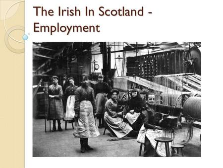 The Irish In Scotland - Employment