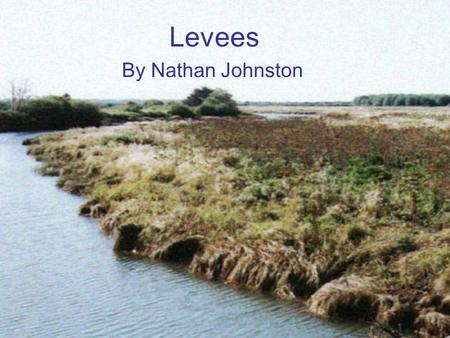 Levees By Nathan Johnston. What are levees? A levee is a type of dam that runs along the banks of a river or canal. Levees reinforce the banks and help.