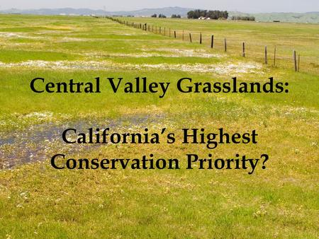 Central Valley Grasslands: California's Highest Conservation Priority?