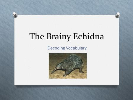 The Brainy Echidna Decoding Vocabulary. If you wanted to push yourself to the outermost chalk line of human endurance, you might consider an ultramarathon,