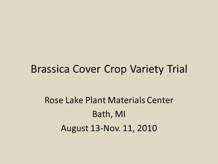 Brassica Cover Crop Variety Trial Rose Lake Plant Materials Center Bath, MI August 13-Nov. 11, 2010.