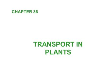 TRANSPORT IN PLANTS CHAPTER 36. The algal ancestors of plants were completely immersed in water and dissolved minerals. Terrestrial adaptation: - roots: