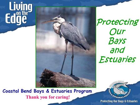 Coastal Bend Bays & Estuaries Program Protecting Our Bays and Estuaries Thank you for caring!
