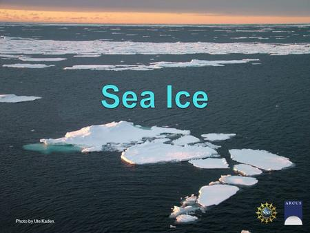 Photo by Ute Kaden.. What is sea ice? How is it formed? Why is it important? Who / What does sea ice impact? How do scientists study sea ice? What do.