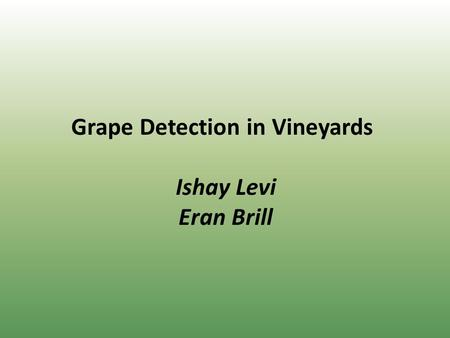 Grape Detection in Vineyards Ishay Levi Eran Brill.