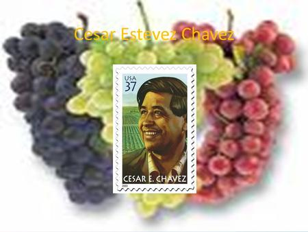 Cesar Estevez Chavez =. BIRTH Cesar was born on March 31, 1927. He was born in San Luis, Arizona. His family has lived there since his grandfather migrated.