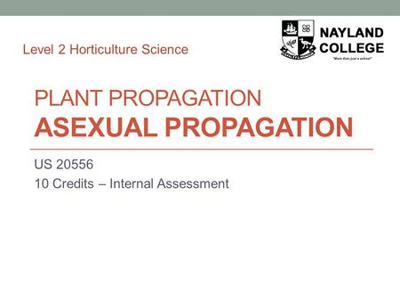 PLANT PROPAGATION ASEXUAL PROPAGATION US 20556 10 Credits – Internal Assessment Level 2 Horticulture Science.