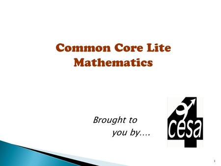 1 Common Core Lite Mathematics Brought to you by….