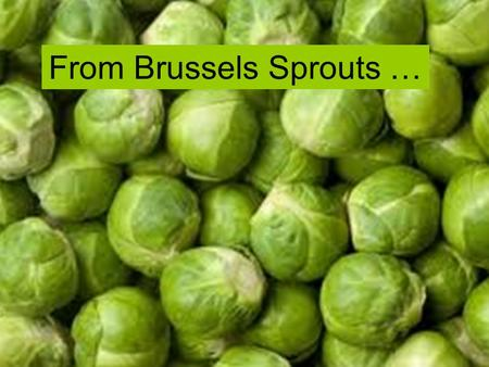 Naomi Ingram, University of Otago From Brussels Sprouts …