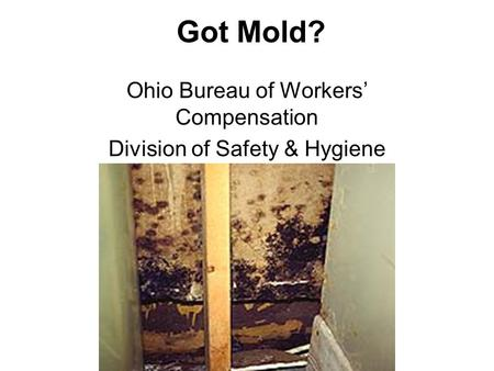 Got Mold? Ohio Bureau of Workers' Compensation Division of Safety & Hygiene.