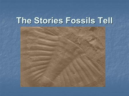 The Stories Fossils Tell. Can you name the 4 types of Fossils ? 2.