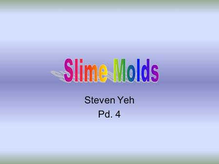 Steven Yeh Pd. 4. What Are They? 2 groups of protists –1. Plasmodial slime molds –2. Cellular Slime Molds Similar to fungi because of convergent evolution.