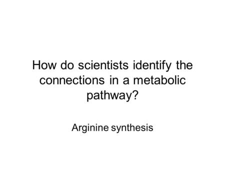 How do scientists identify the connections in a metabolic pathway? Arginine synthesis.