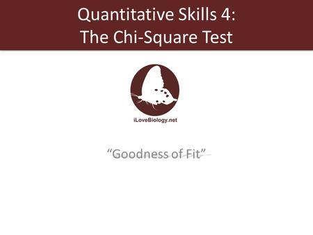 "Quantitative Skills 4: The Chi-Square Test ""Goodness of Fit"""