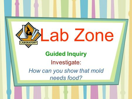 Lab Zone Guided Inquiry Investigate: How can you show that mold needs food?