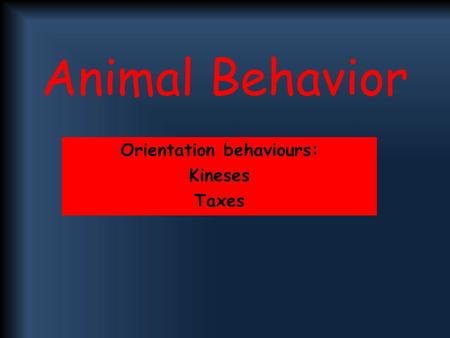 Orientation behaviours: Kineses Taxes