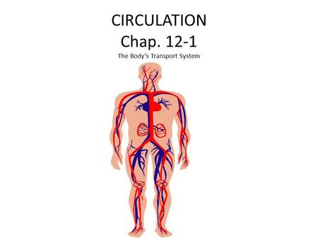 CIRCULATION Chap. 12-1 The Body's Transport System.
