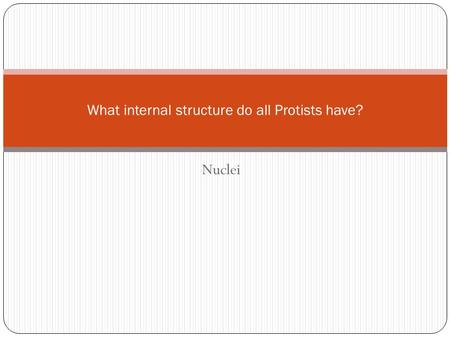 Nuclei What internal structure do all Protists have?
