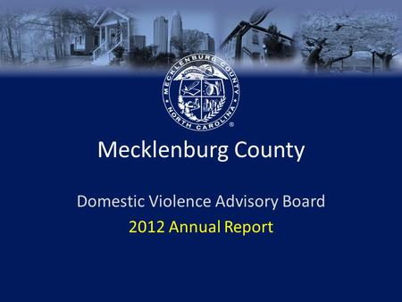 Mecklenburg County Domestic Violence Advisory Board 2012 Annual Report.
