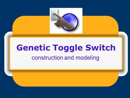 Genetic Toggle Switch construction and modeling. Toggle switch design.