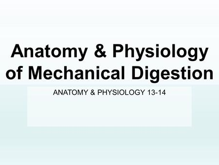 Anatomy & Physiology of Mechanical Digestion ANATOMY & PHYSIOLOGY 13-14.