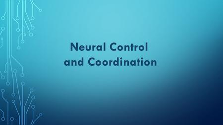 Neural Control and Coordination.