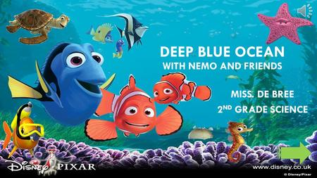 DEEP BLUE OCEAN WITH NEMO AND FRIENDS MISS. DE BREE 2 ND GRADE SCIENCE.