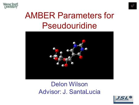 AMBER Parameters for Pseudouridine Delon Wilson Advisor: J. SantaLucia.