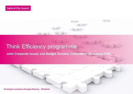 Think Efficiency programme Joint Corporate Issues and Budget Scrutiny Committees 24 August 2009.