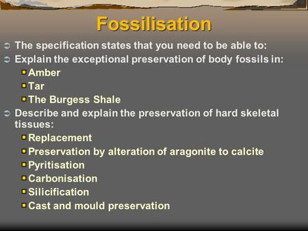 Fossilisation  The specification states that you need to be able to:  Explain the exceptional preservation of body fossils in: Amber Tar The Burgess.