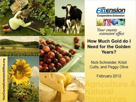 How Much Gold do I Need for the Golden Years? Nick Schneider,Kristi Cutts, and Peggy Olive February 2012.