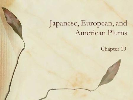 Japanese, European, and American Plums Chapter 19.