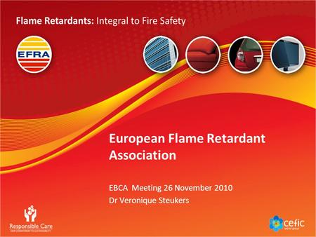 European Flame Retardant Association EBCA Meeting 26 November 2010 Dr Veronique Steukers.