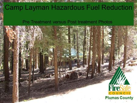 Camp Layman Hazardous Fuel Reduction Pre Treatment versus Post treatment Photos Plumas County.