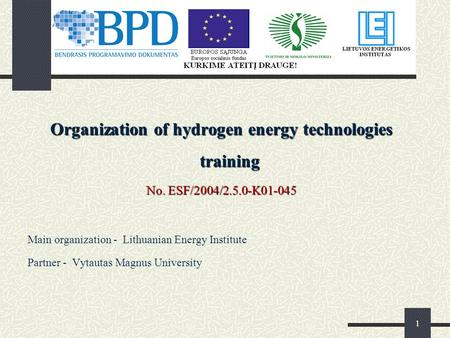 1 Organization of hydrogen energy technologies training No. ESF/2004/2.5.0-K01-045 Main organization - Lithuanian Energy Institute Partner - Vytautas Magnus.