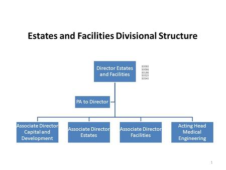 Director Estates and Facilities Associate Director Capital and Development Associate Director Estates Associate Director Facilities Acting Head Medical.