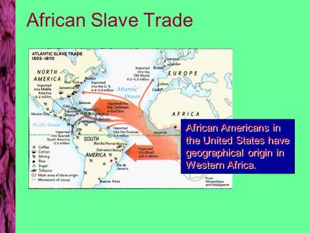 Dr. Enrique Olguin, Ph.D. North Seattle Community College African Slave Trade African Americans in the United States have geographical origin in Western.