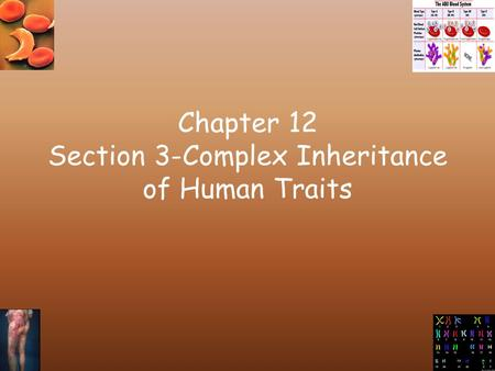 Chapter 12 Section 3-Complex Inheritance of Human Traits.